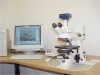 labmicroscope